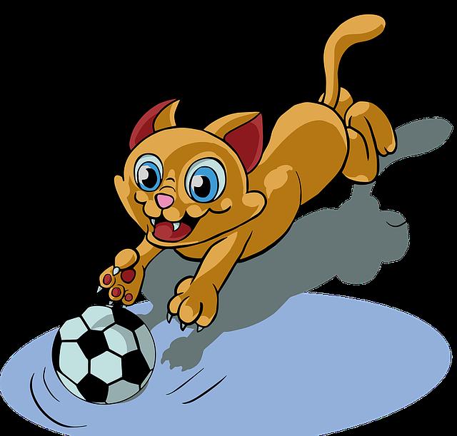 Katze jagen Ball